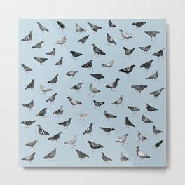 Pigeons Doing Pigeon Things Metal Print