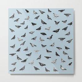 Pigeons Doing Pigeon Things Metal Print