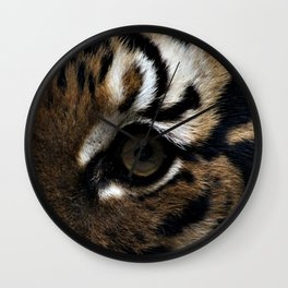 Eyes of the Tiger Wall Clock