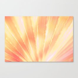 Spectral Warm Canvas Print