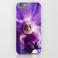 Orchid Vanda 91 iPhone 6s Slim Case