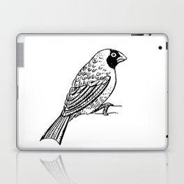 The Bird Laptop & iPad Skin