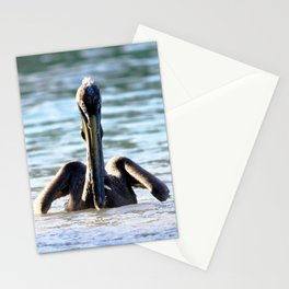 Watercolor Bird, Brown Pelican 08, St John, USVI Stationery Cards
