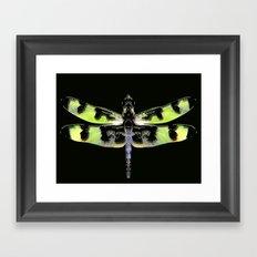 Dragon Fly #1 Framed Art Print