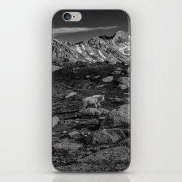 Mountain Goat at Twin Lakes iPhone Skin