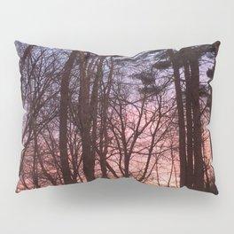Rainbow Woods Pillow Sham