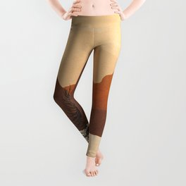 River Canyon Leggings