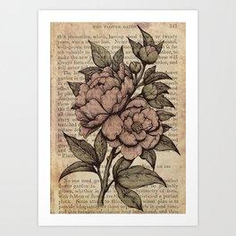 Peonies  - Color Art Print