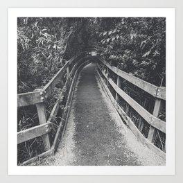 Marsh Path 2 Art Print