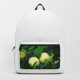 Golden Quince, Apple or a Pear? Backpack