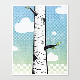 White Birch Canvas Print