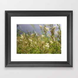 Meadow I Framed Art Print