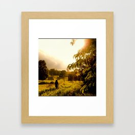 Beauty in Distant Places Framed Art Print