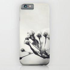 Spring II in Sepia Slim Case iPhone 6s