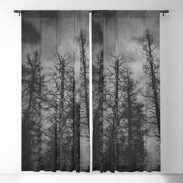 Transmission Blackout Curtain