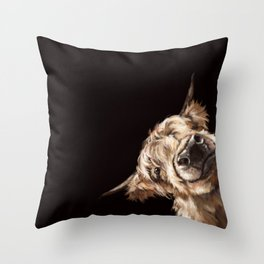 Sneaky Highland Cow in Black Throw Pillow