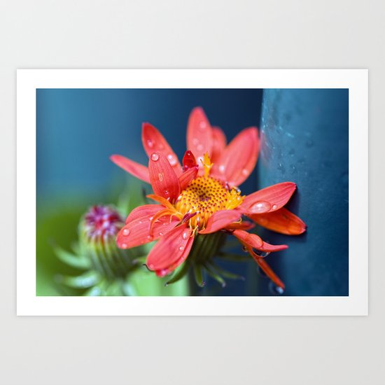 I must have flowers, always, and always. Art Print