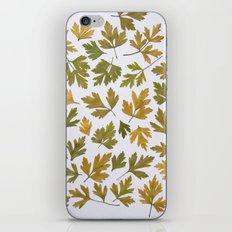 Parsley Autumn iPhone & iPod Skin