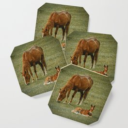 Horse And Foal Coaster