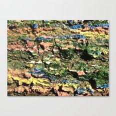 Crunchy Taffy Canvas Print