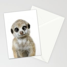 Meerkat Suricat suricatta Stationery Cards
