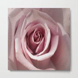 Soft Pink Rose Metal Print