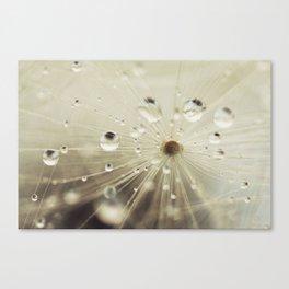 For the rainy days Canvas Print