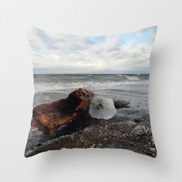 Driftwood And Ice in Spring Throw Pillow