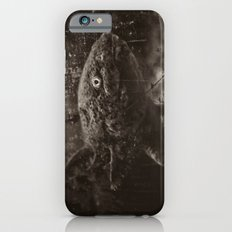 Axolotl Horst iPhone 6 Slim Case