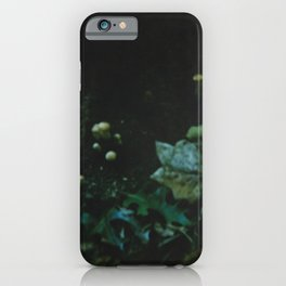 Earthen Phase iPhone Case
