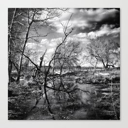 Dark Reflection Canvas Print
