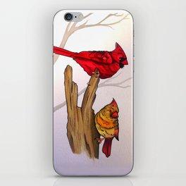 The Cardinals  iPhone Skin