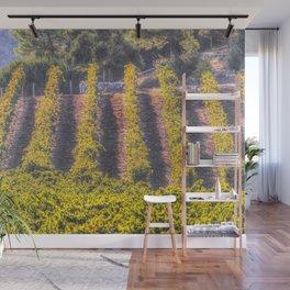Summertime Vineyard Wall Mural