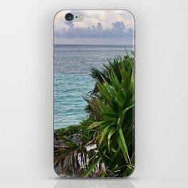 Caribbean Island iPhone Skin