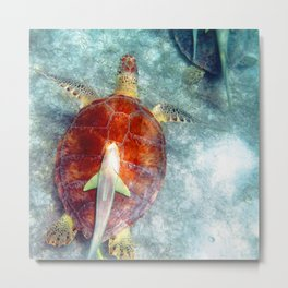 Watercolor Turtle, Green Turtle 01, St John, USVI, Free Rides For Whitefin Sharksuckers Metal Print