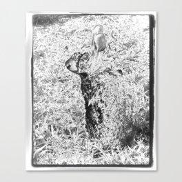 Spirit Rabbit III Canvas Print