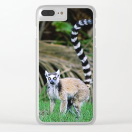 Madagascar's Exotic Ringtail Lemur Clear iPhone Case