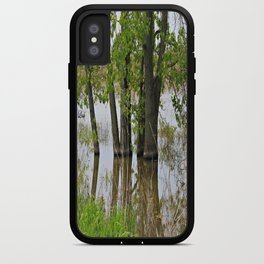 Reflections in a Marsh iPhone Case