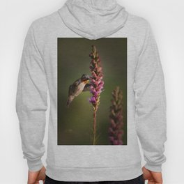 Hummingbird and flower Hoody