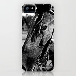 Horse-1-B&W iPhone Case