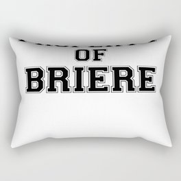Property of BRIERE Rectangular Pillow