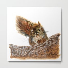 Cheeky the Red Squirrel by Teresa Thompson Metal Print
