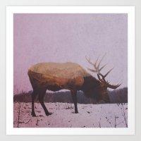 elk Art Prints featuring Elk by Andreas Lie