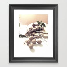 Fine art Print, Interior decoration - dried fruits, still life, interior design, high quality photo Framed Art Print