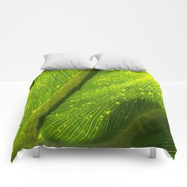Spotted Leaf Comforters