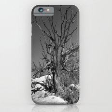 Lone Tree iPhone 6s Slim Case