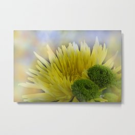 the beauty of a summerday -63- Metal Print