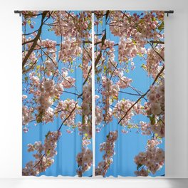 Cherry Blossoms and Blue Sky at Kew Gardens 2019 Blackout Curtain