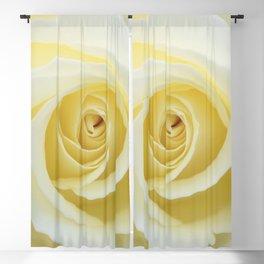 Beautiful Yellow Rose Blackout Curtain