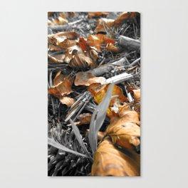 Treasured Leaf 2011 Canvas Print